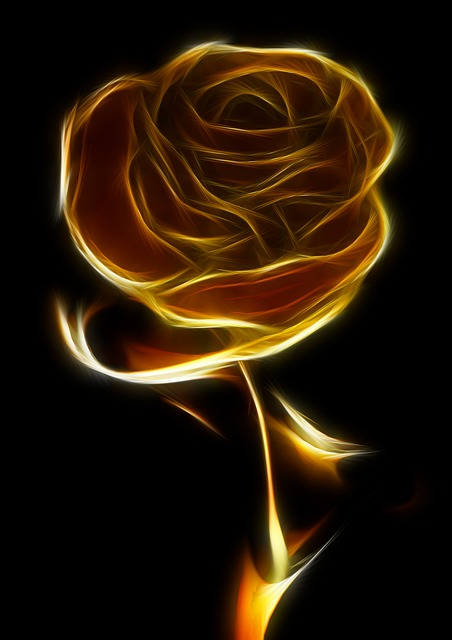 rose, black, gold, yellow, fractal, artistically