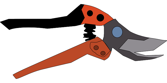 scissors, office, tool, hardware, garden