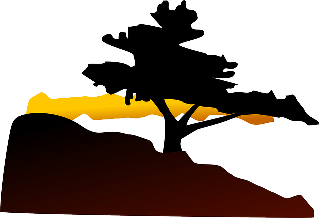 set, mountain, silhouette, plants, sun, tree, cartoon