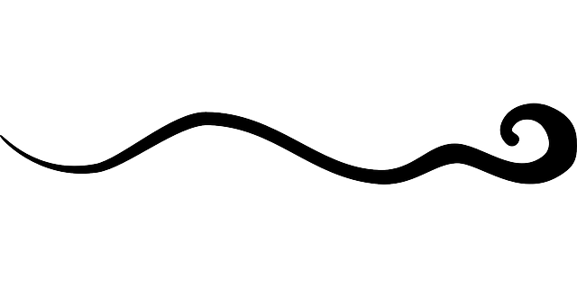 sign, black, flourish, symbol, ten