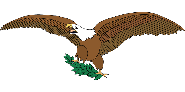sign, spread, symbol, eagle, peace, bird, flying, plant