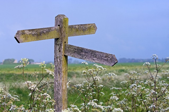 signpost, wooden, pointer, pointing, blue, sky, rural