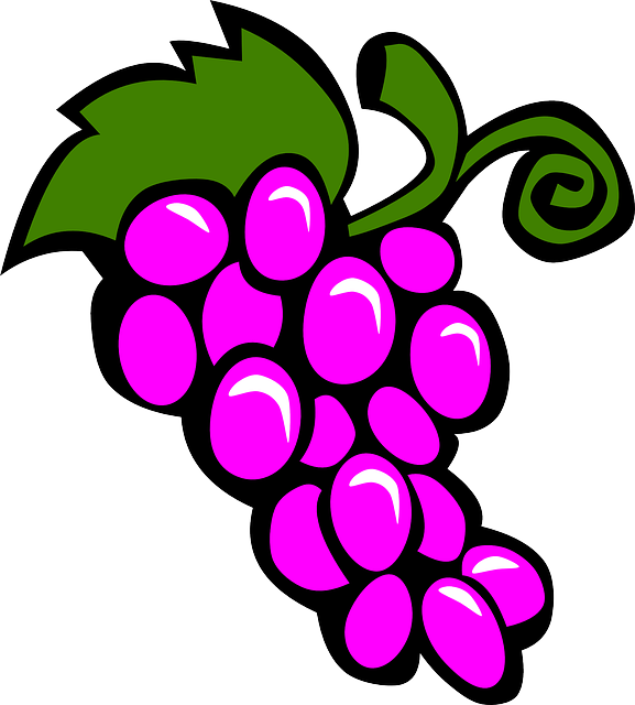 simple, food, fruit, grapes, drawing, cartoon, purple
