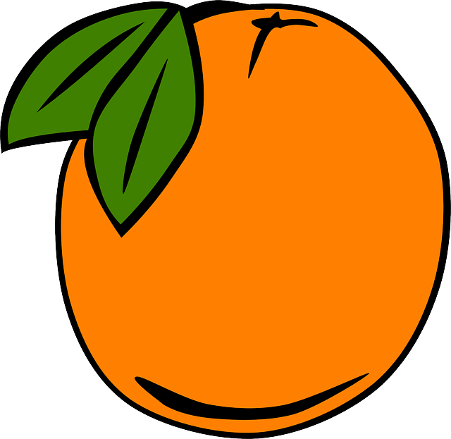 simple, food, fruit, menu, cartoon, orange, fruits