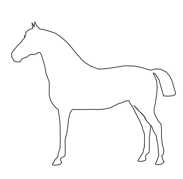 simple, outline, ride, barn, horse, animal, mammal