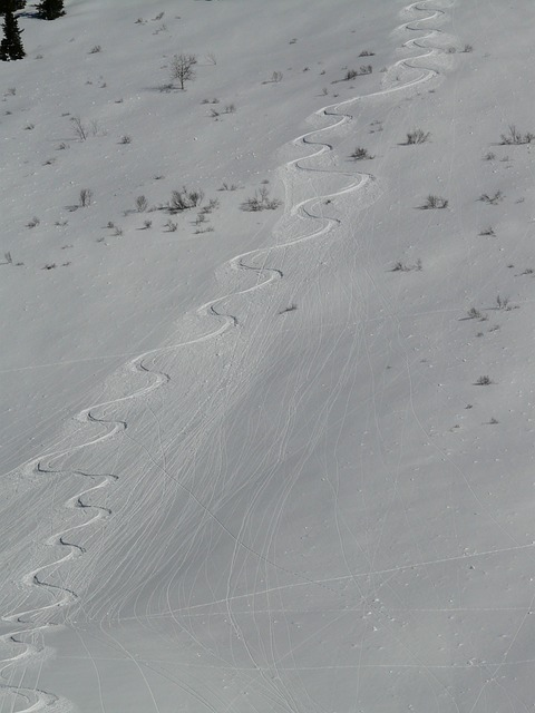 skiing, departure, wag, trace, curves, snow, snowy