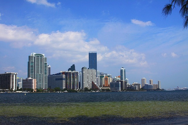 skyline, miami, florida, building, skyscraper, ocean