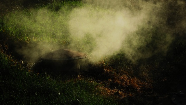 smoke, fog, grass, pollution, nature, background, green