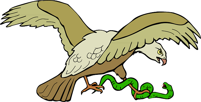 snake, symbol, eagle, bird, wings, claws, caught, with