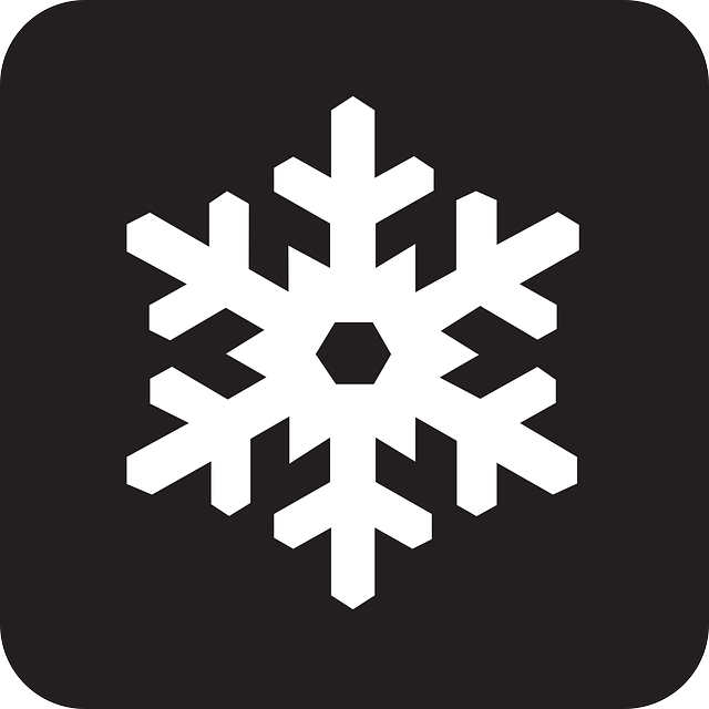 snowflake, plate, crystal, snow, cold, ice, black