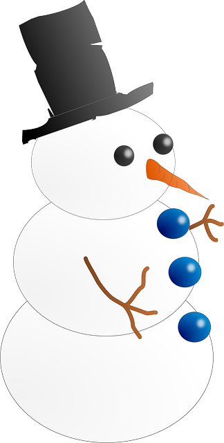 snowman, cold, frosty, snow, winter, topper, carrot