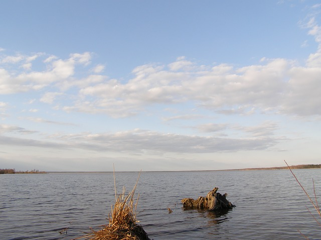 spring, water, sky, lake, clouds