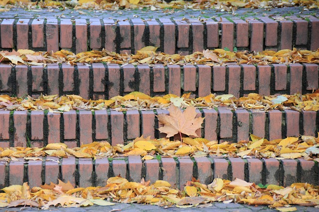 stairs, autumn, jahreseit, leaves, leaf fall, october