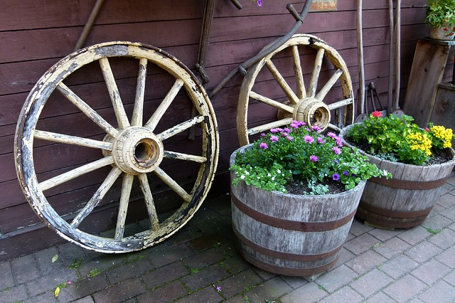still life, wooden, plant, pot, tires
