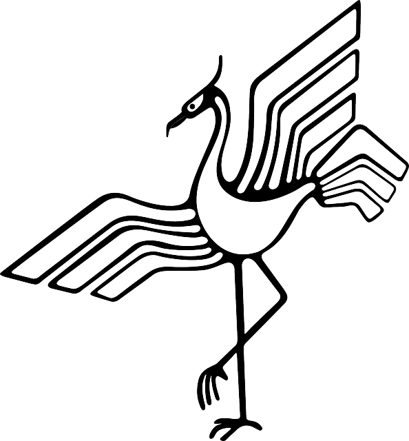 stork, beak, bird, feathers, plumes, black, outline