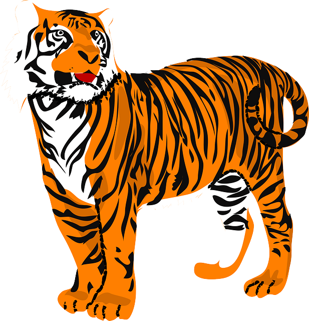 stripes, tiger, standing, animal, tail, mammal