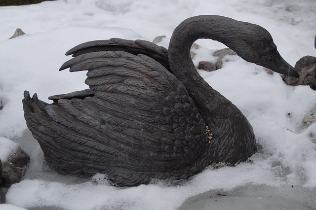 swan, winter, cold, snow, icy, black, black swan, metal