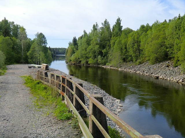 sweden, forest, trees, woods, river, stream, water, sky