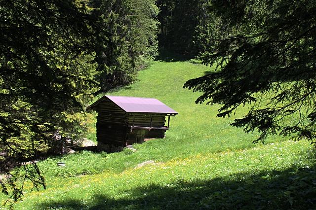switzerland, alpine, mountains, hut, pasture, log cabin
