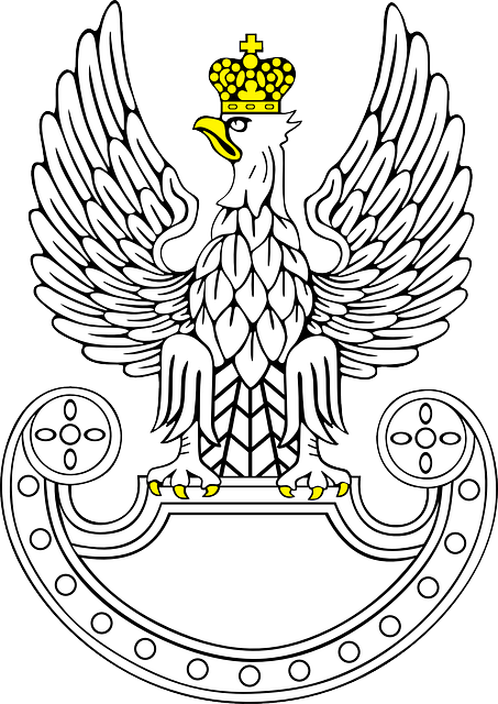 symbol, eagle, bird, wing, wings, animal, eagles