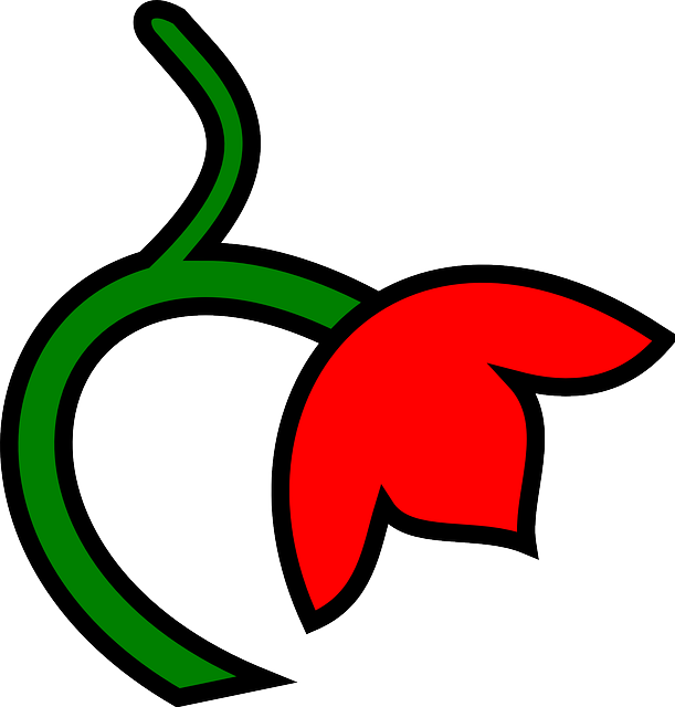 three, red, green, leaf, flower, down, color, plant