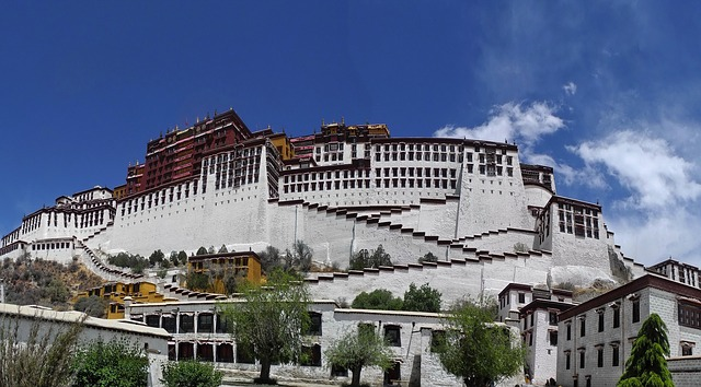 tibet, potala palace, buildings, architecture, scenic