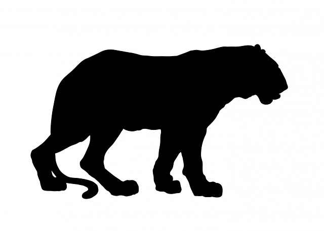 tiger, animal, black, silhouette, clipart, big, cat