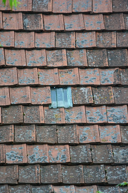tile, rooftop, meant to be, old attic