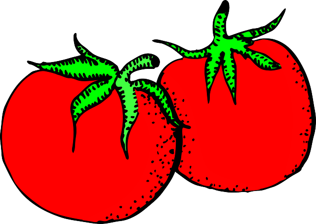 tomatoes, red, food, vegetable, salad, plant, veggies