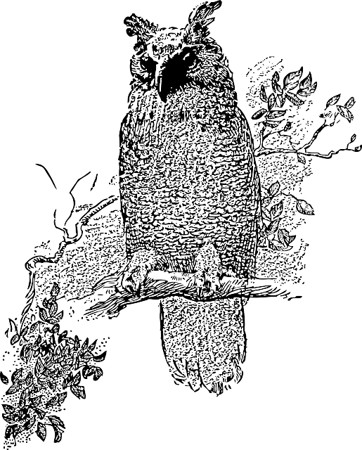 tree, cartoon, bird, owl, branch, stand, night, vine