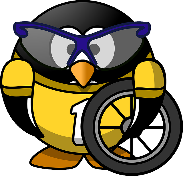 tux, animal, bicycle, bike, biking, bird, cycle