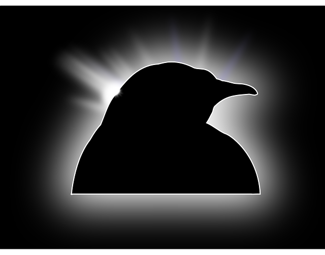 tux, penguin, linux, silhouette, light, stars, bird
