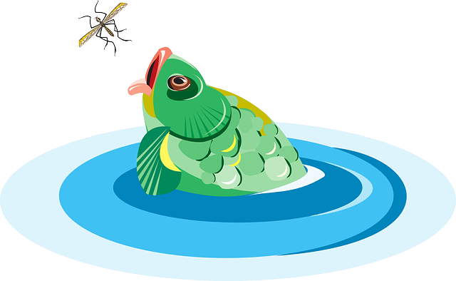 water, bug, fish, reaching, scales, eating, scale