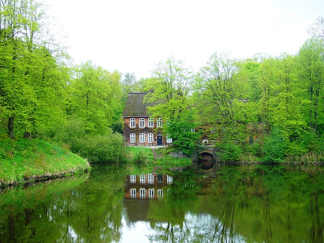 water, mill, trees, spring