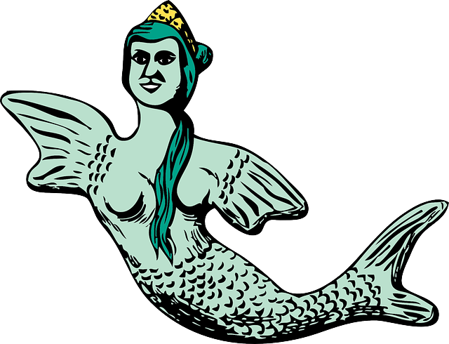water, people, woman, mermaid, fish, animal, tail