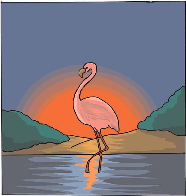water, pink, sky, bird, sunset, art, flamingo, the