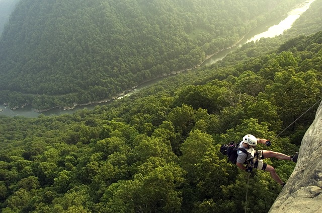 west virginia, new river gorge, landscape, forest