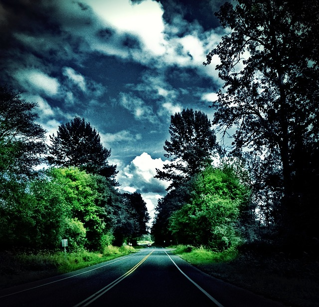 whatcom, county, washington, rural road, clouds