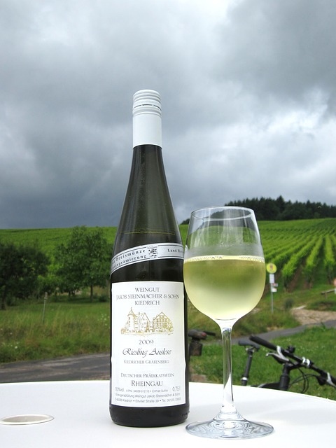 white wine, bottle, sky, clouds, nature, outside