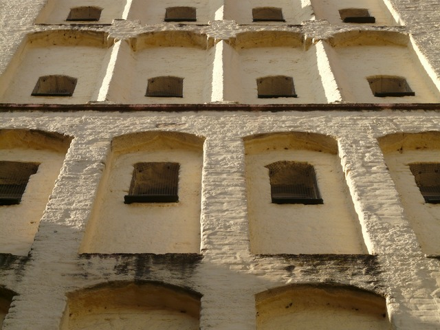 window, facade, building, tower, white horn