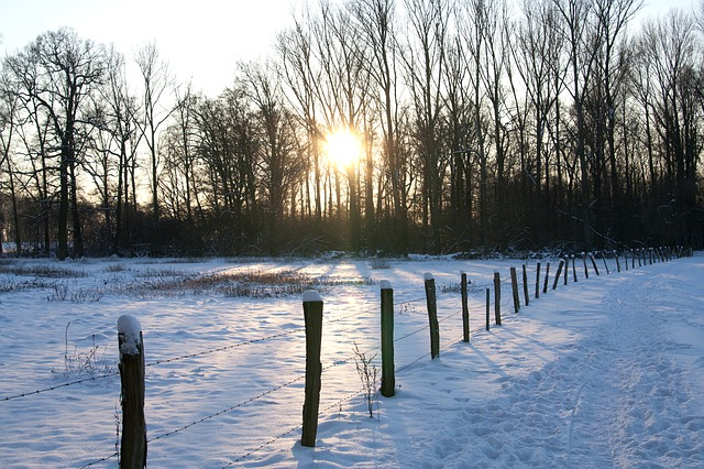 wintry, snow, cold