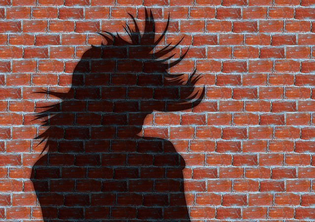 woman, hair, model, wall, stones, shadow, silhouette