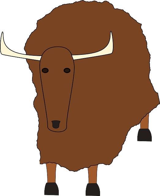yak, animal, mammal, brown, simple
