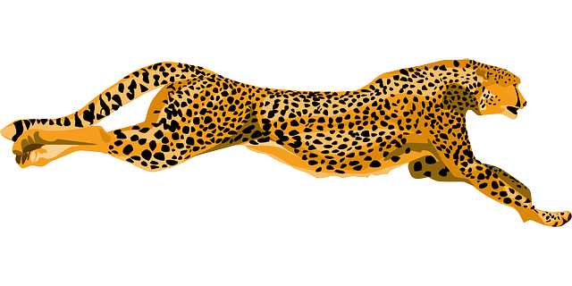 yellow, cartoon, running, cheetah, leaping, leopard
