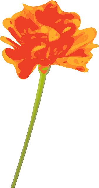 yellow, plants, flower, flowers, cartoon, orange