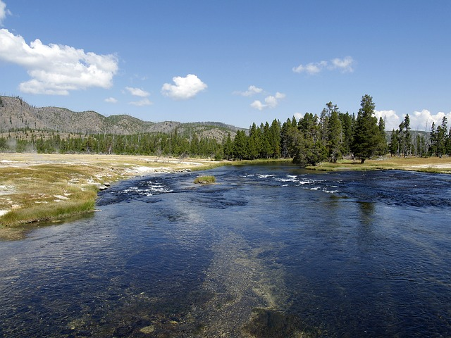 yellowstone river, water, wyoming, usa, landscape