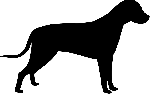 dog, realistic, silhouette, simple, standing