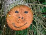 face, happiness, happy, smile, wood, tree, forest