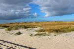saint peter ording, dunes, beach, north sea, coast