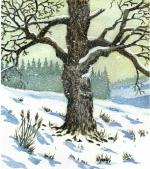 watercolour, painting, tree, wintry, snow
